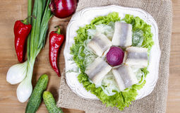 Pickled herring with fresh vegetables Royalty Free Stock Photo