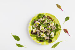 Pickled herring, mix of green salad, onion, boiled quail eggs and grated parmesan cheese with lemon juice and olive oil Royalty Free Stock Photos