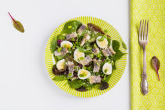 Pickled herring, mix of green salad, onion, boiled quail eggs and grated parmesan cheese with lemon juice and olive oil. Royalty Free Stock Photos