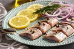 Pickled herring with red onion and lemon slices. Stock Photo