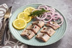 Pickled herring with red onion and lemon slices. Stock Photography
