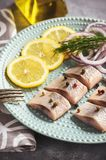 Pickled herring with red onion and lemon slices. Royalty Free Stock Photography