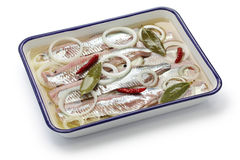 Pickled herring Royalty Free Stock Image
