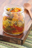 Pickled hot peppers Royalty Free Stock Photos
