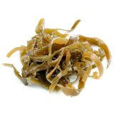 Pickled Laminaria Isolated on White Background Stock Photos