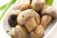 Pickled Mushrooms Stock Photo