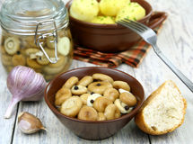 Pickled mushrooms Royalty Free Stock Photos