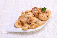 Pickled mushrooms in the bowl Stock Photos