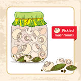Pickled mushrooms in the glass jar with bay leaf and black pepper Stock Images