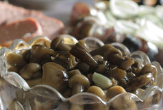 Pickled mushrooms honey agarics. In a crystal plate Royalty Free Stock Image