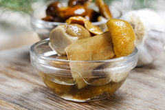 Pickled mushrooms in transparent glass bowl Royalty Free Stock Images