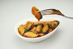 Pickled Mussels Stock Images
