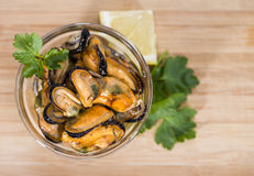 Pickled Mussels (with fresh herbs) Stock Photography