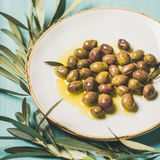 Pickled olives in oil and olive-tree branch over blue background. Pickled green Mediterranean olives in virgin oil on white ceramic plate and olive tree branch Stock Image