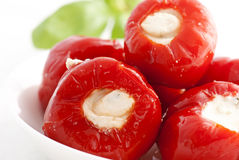 Pickled paprika Stock Images