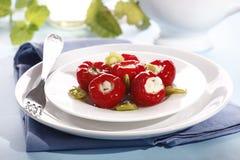 Pickled paprika Stock Images