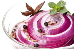 Pickled Red Onions with Spices and Herbs Royalty Free Stock Images
