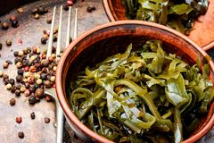 Bowl of sea kale. Pickled sea kale in the bowl.Fresh seaweed salad stock image