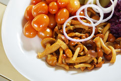 Pickled small tomatoes with rings of onion and mushrooms Stock Images