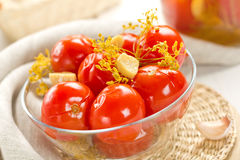 Pickled tomatoes Royalty Free Stock Image
