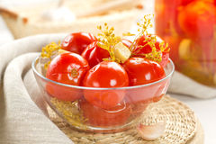 Pickled tomatoes. With garlic and fennel Royalty Free Stock Photo