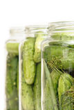 Pickles. Cucumbers prepared for pickling in jars royalty free stock photos