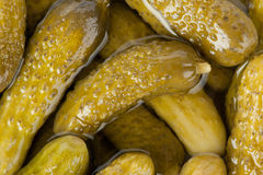 Pickles. Closeup. Can use as background Stock Image