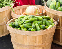 Pickles in a basket on display Royalty Free Stock Images