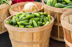 Pickles in a basket on display Stock Image