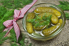 Pickles in brine Stock Photography