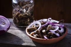 pickles Champignons de couche marinés Photographie stock