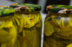 Pickles or cucumbers with zucchini with curry spice. Royalty Free Stock Photos