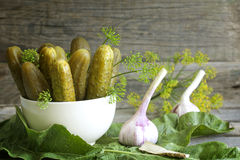 Pickles gherkins salted cucumbers still life Stock Images