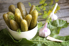Pickles gherkins salted cucumbers still life Stock Photos