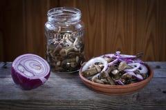 Pickles. Marinated mushrooms. Forest salty honey agarics. Marinated mushrooms Stock Photography