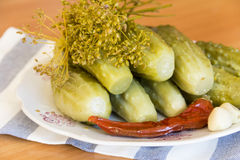 Pickles on a plate. Pickles and spices on a plate Stock Image