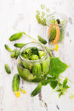 Pickles. Preserved cucumber. Royalty Free Stock Images