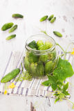 Pickles. Preserved cucumber. Stock Photo
