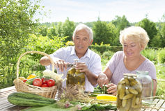 Pickling Royalty Free Stock Photography