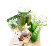 Pickling cucumbers Stock Image