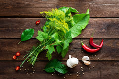 Pickling cucumbers ingredients Royalty Free Stock Photography