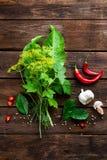 Pickling cucumbers ingredients Royalty Free Stock Image