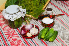 Pickling cucumbers, pickling - cucumbers, herbs, spices, salt, h Royalty Free Stock Image