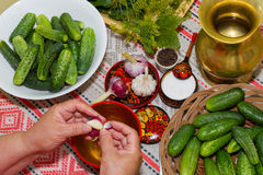 Pickling cucumbers, pickling - hands close-up, cucumber, herbs, Stock Photo