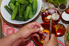 Pickling cucumbers, pickling - hands close-up, cucumber, herbs, Stock Image