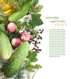 Pickling cucumbers and spices Royalty Free Stock Images
