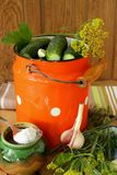 Pickling cucumbers and spices Royalty Free Stock Photo