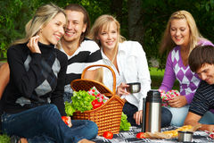 Picknick Stock Foto