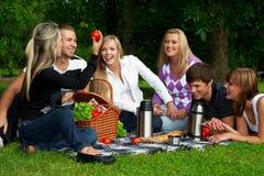 picknick Royaltyfri Fotografi