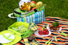 picknick Royaltyfria Bilder